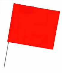 SECO 21 Inch Stake Flags 4 x 5 Inch (100 pcs) Red GLO